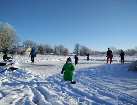 Morgan på engen ved den skøjtebane, vi brugte et par timer på at feje ren der i den lysende hvide stilhed.